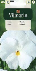 Fialka veľkokvetá biela - Vilmorin