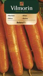 Mrkva BOLERO - Vilmorin
